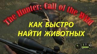 Симулятор охоты The Hunter: Call of the Wild Как быстро найти животных