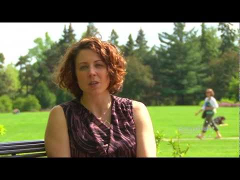 Rothenberger Institute: Innovative Health Education