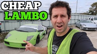 I Found a RARE Lamborghini at the Salvage Auto Auction! Should I Buy It?