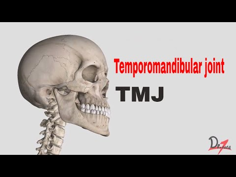 Anatomy of TMJ ( Temporomandibular joint )