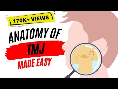 Anatomy of TMJ ( Temporomandibular joint )