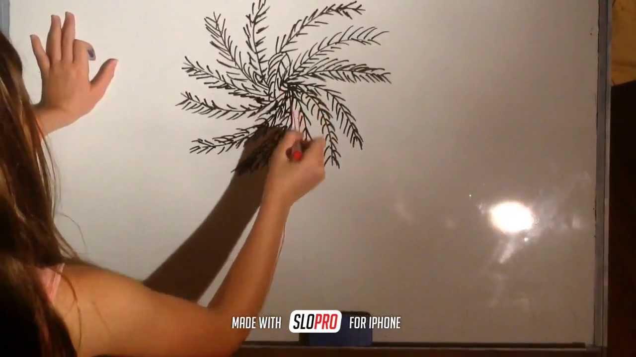 comment dessiner un palmier youtube