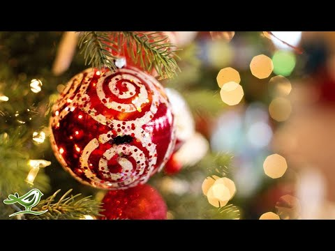 Relaxing Christmas Music: O Christmas Tree | Instrumental Harp Music ★23
