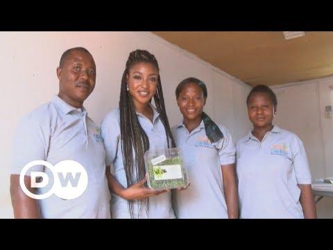 Nigeria goes hydroponic | DW English