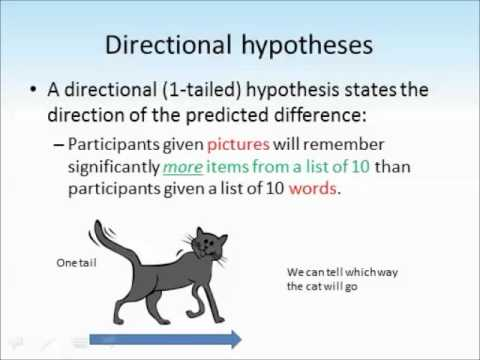 Hypotheses tutorial