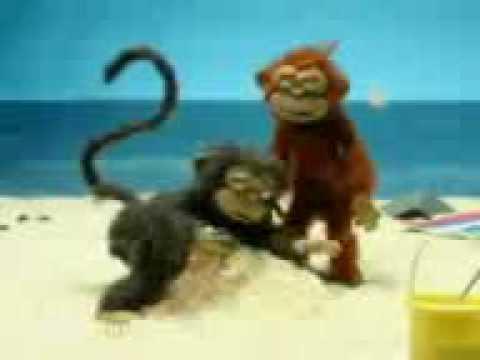Den kneppesyge abe