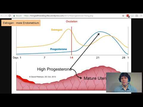 MCAT Question of the Day: Estrogen and Progesterone - YouTube
