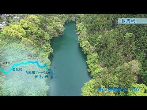 【絶景!】ドローンによる多摩川138キロの桜旅