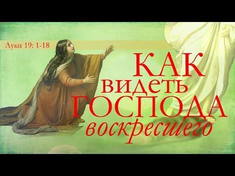 баптисты в сша знакомство