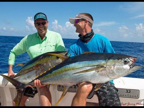 CAYMAN Islands FISHING At Pickle Bank 1st Half