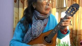 Gọi tên bốn mùa - St:Trịnh Công Sơn- Mandolin Việt Dung