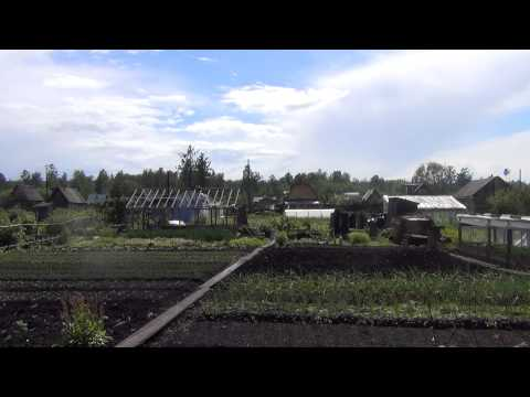 Дача 25 июня 2013 год лесосибирск