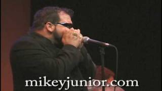 Come Back Home Baby: Sonny Boy Williamson Blues Harmonica by Mikey Junior