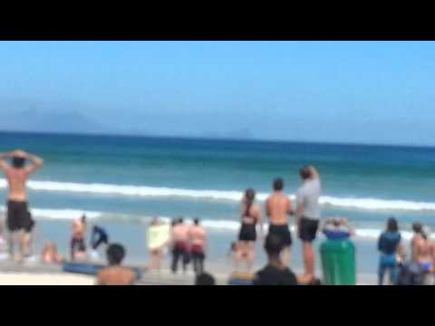 Muizenberg Beach- Surfers play chicken with three great whites.