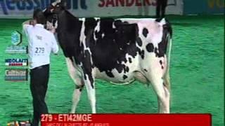 Eurogénétique 2012 - Prim'Holstein - Championne Espoir
