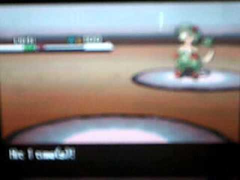Pokemon B/W Wifi Battle 2
