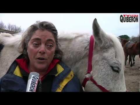 Des cavaliers ont mangé du cheval - TV Quiberon 24/7