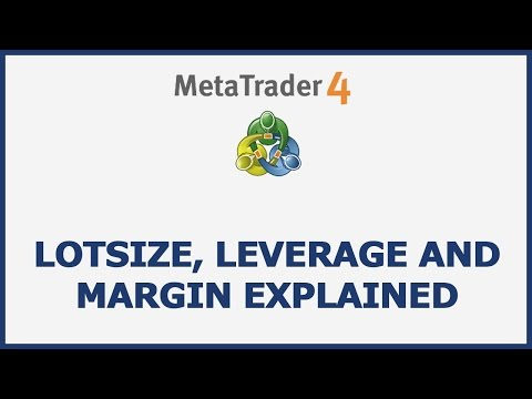 Lot Size, Leverage And Margin