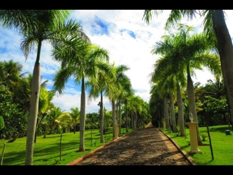 Dominican Luxury Homes: The Best Investment Properties in Dominican Republic