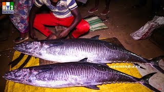 Amazing Fish Cutting  Skills | #Fastest Fish Cutting  | Big Fish Clean And Fillet street food