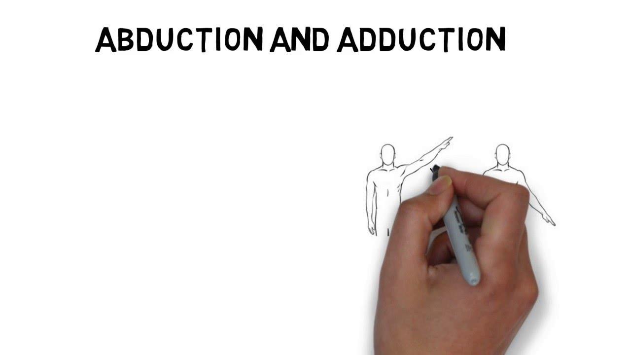 Human Anatomy: Body movements : Topic 1.2 - YouTube