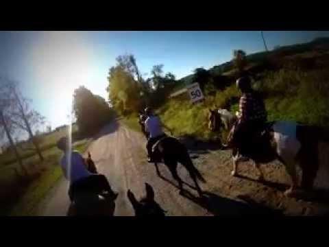 Horseback riding at Maple Crescent Farm