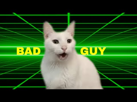 Billie Eilish  Bad Guy  Cats Version
