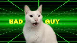 Billie Eilish  Bad Guy  Cats Version