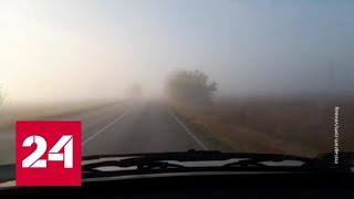 """""""Погода 24"""": Москву ждет новая волна потепления - Россия 24"""