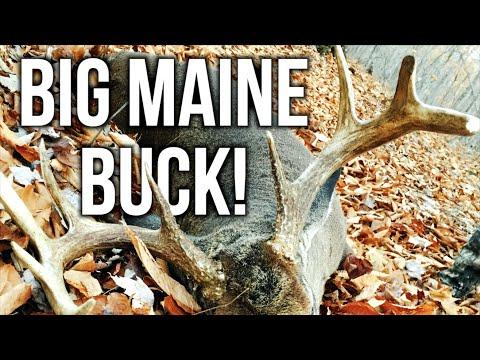 """DOUG"" | Maine Deer Hunting!"