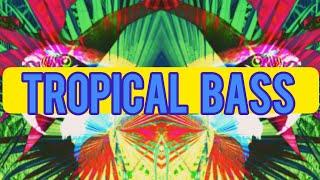 Великий DJ.YURAN - Tropical Bass. ( МУЗЫКА США - ЖАНР МУЗЫКА ) / Видео