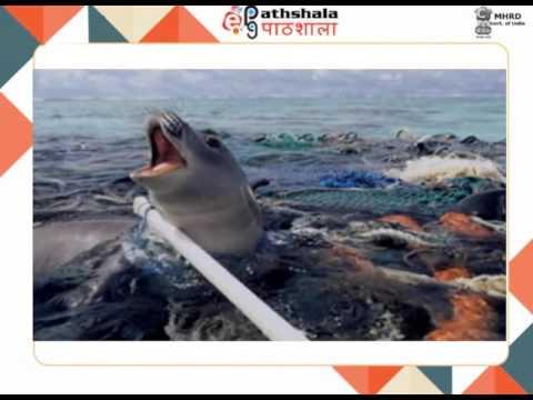 Soil pollution: Plastics (CHE)