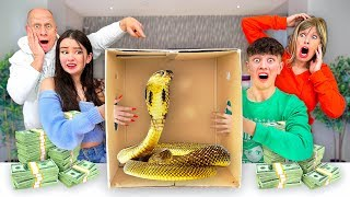 EXTREME What's In The Box Challenge! *LIVE ANIMALS*