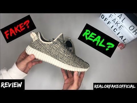 ADIDAS YEEZY 350 V1 TURTLEDOVE (REAL OR FAKE?) REVIEW
