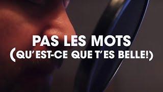 Grégoire - Pas Les Mots (Qu'est-ce que t'es belle!) (clip non officiel)
