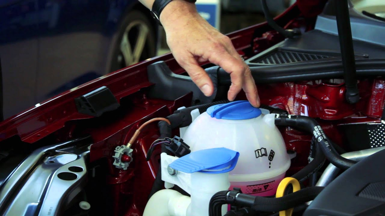 Checking the coolant levels - VW