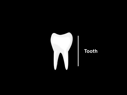 Tooth decay - drilling down to the nanoscale