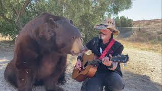 Ben the Bear Loves Classic Hank Williams
