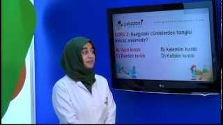 İlköğretim 4. Sınıf Türkçe Eğitim Seti Soru Çözümü