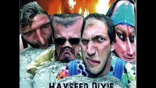 Hayseed Dixie   I Got Erection