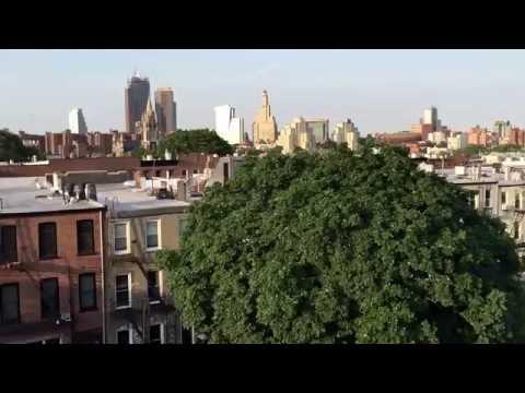 roof top view, Carroll Gardens, Brooklyn, New York (6-26-16)