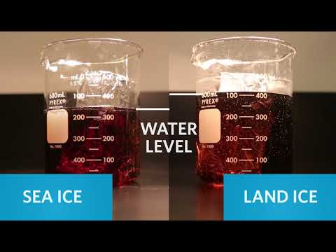 Heating H20: The Chemistry of Sea Level Rise   California Academy of Sciences