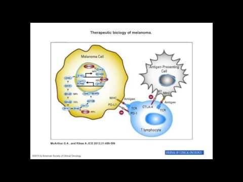 Immunotherapy - the new treatment for cancer.