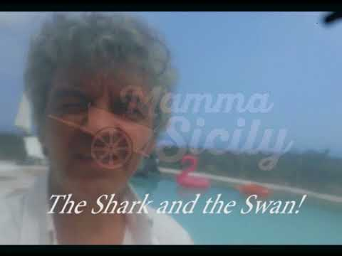 The shark and the swan