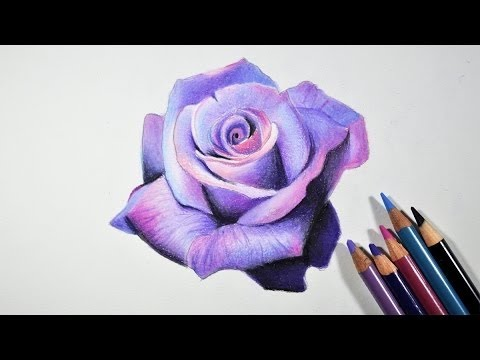 Drawing Flowers: How to Draw a Rose With Pencil - YouTube