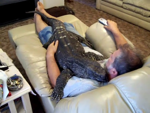 Watching T.V. with my Giant Black Throat Monitor=bigboy3293