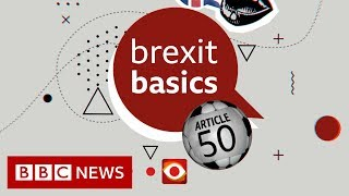 Brexit: How do you delay leaving? - BBC News