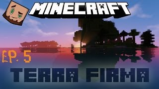 TerraFirmaCraft # 5: I can count to 15...