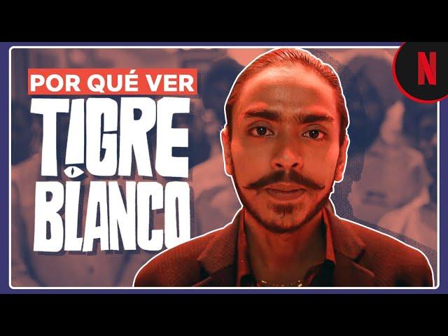 Tigre Blanco | Lo que tienes que saber antes de verla | Netflix