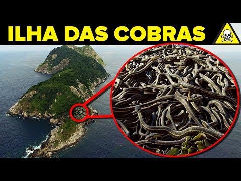 Conheça A PERIGOSA Ilha Das COBRAS